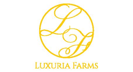 Logo-53-26